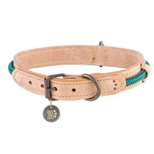 leather collar green
