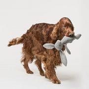 Zabawka dla psa Rupert 4-min
