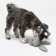 Zabawka dla psa Rupert 5-min