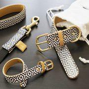 dog-collars-arguscollar-bw-set